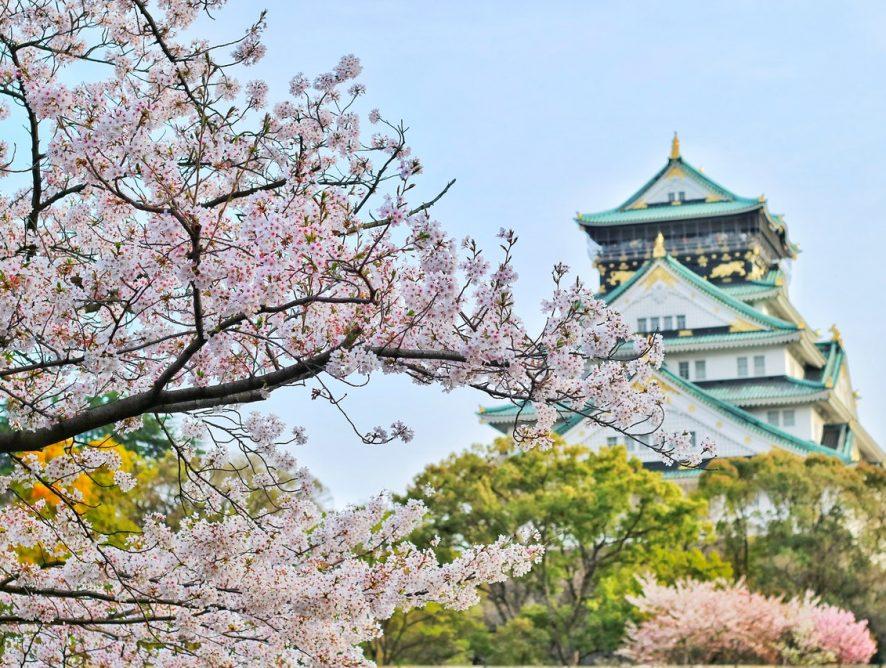 Japoński minimalizm, czyli mniej znaczy więcej