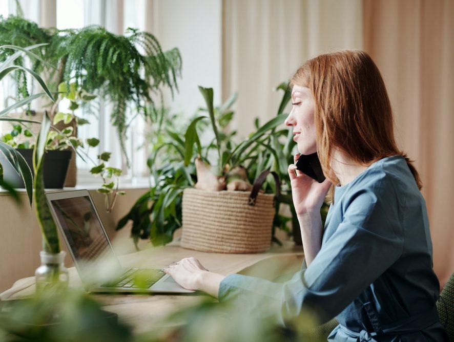Rośliny oczyszczające powietrze - sprawdź, jakie warto mieć w swojej pracy lub domu