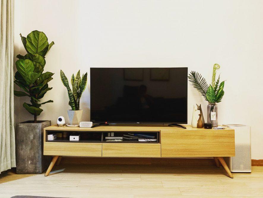Wiosenna ramówka telewizyjna  – powroty popularnych formatów i kilka nowości!